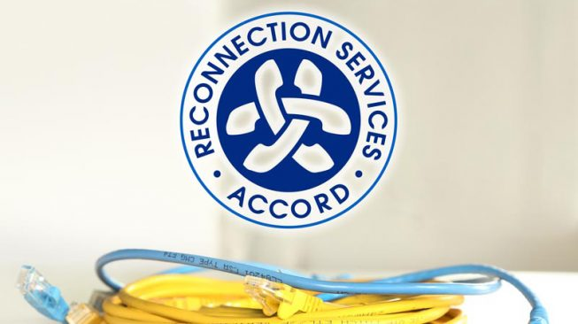 Bash Creative Design Portfolio - Branding - Accord Reconnection Services
